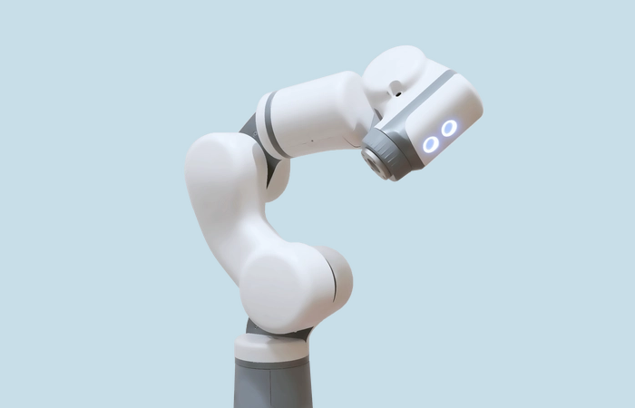 White Eva robot used for the project
